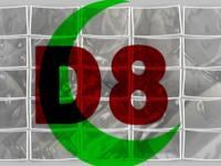 D8`LER İSTANBUL`DA BULUŞUYOR
