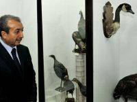 Türkiye`nin ilk `Dondurulmuş Hayvan Müzesi` Açıldı