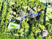 İstanbul'da Kent Ormanı Müjdesi