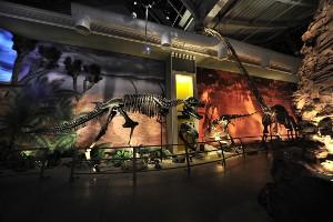 İstanbul Sokaklarında Her An Bir Dinozorla Karşılaşabilirsiniz!
