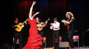 Flamenco Reina