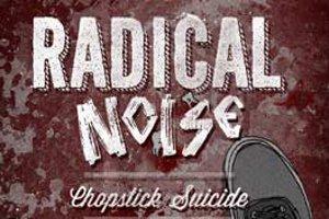 Radical Noise 20. Sene Özel Konseri