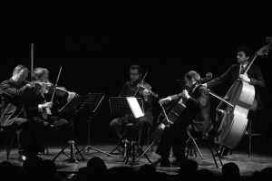 Wienner Kammersymphonie