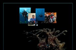 Tahsin Ceylan - Denizin Ruhu