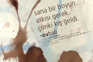 Ev Hali