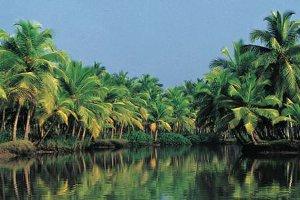 Emirates Holidays İle Sri Lanka'yı Keşif Fırsatı
