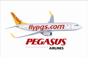 Pegasus Plus'la 3 Adımda Bileti Bedavaya Getirmenin Yolları