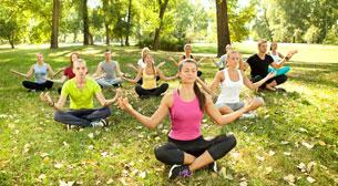 Bir Yoga Klasiği