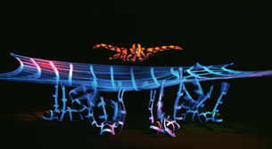 Image - Black Light Theatre
