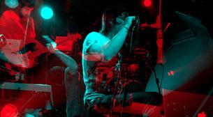Noiseist Label Night