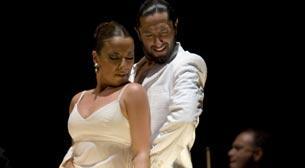 Rafael Amargo-Suite Flamenca