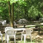Çamlıbel Piknik