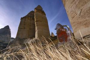 Kim Yong Moon - Totemler Kapadokya'da Sergisi