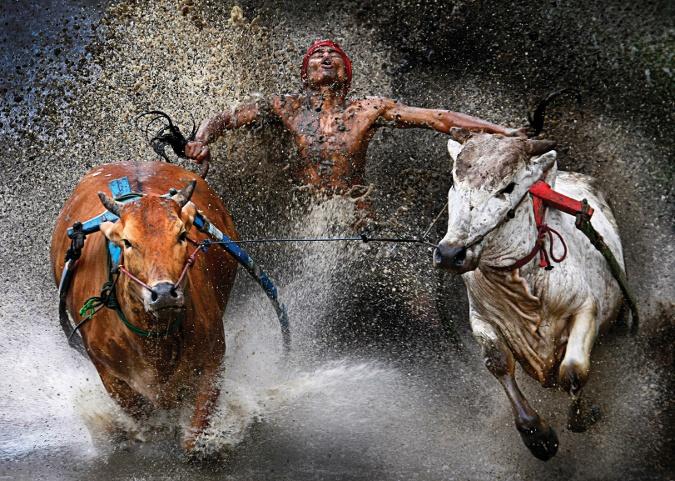 World Press Photo - Dünya Basın Fotoğrafları 2013 Sergisi