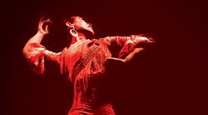 Bir Alegori: Flamenko