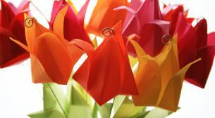 Tasarım Atölyesi - Origami Çiçek Bahçesi 7-9 Yaş