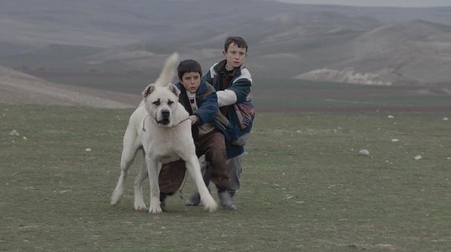 """Genç Yönetmen Kaan Müjdeci, İlk Filmi """"Sivas"""" İle Venedik Film Festivali'nde!"""