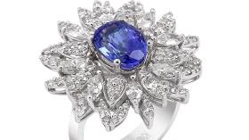 Favori'den Sıradışı Mavi