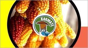 Karmate