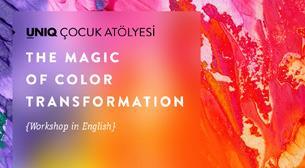 Renklerin Büyülü Dünyası