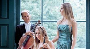 Ayur Trio