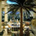 Palm Terrace - Tea Lounge