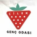 Çilek Genç Odası Türkiye'nin Süper Markaları Arasındaki Yerini Aldı