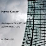 Nechayevschina (YUN) / Afformance (YUN) @ Peyote