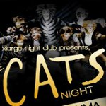 Cats Night