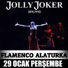Flamenco Alaturka
