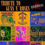 Tribute to Guns n Roses