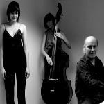 Akbank 19. Caz Festivali / Trio 3
