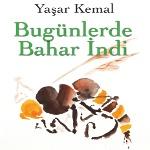 Şair Yaşar Kemal