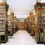 Cervantes Enstitüsü'nde Okul Kütüphaneleri Üzerine Bir Konferans