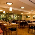 Saloon Restaurant - Bar