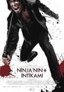 Ninja`nın İntikamı