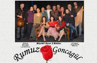 Uçan Eller Kukla Tiyatrosu İstanbul'da 15