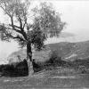 © Beykoz (1878)