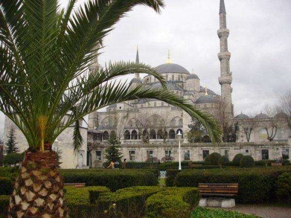 Sultanahmet Cami - Fatih S.
