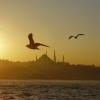 © Selimiye Cami, Haliç`te Gün Batımı - Yahya Ateş