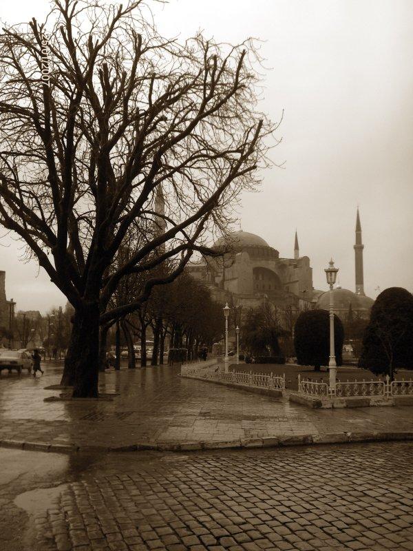 Ayasofya - Gülşah Kotil
