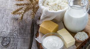 Artisan Peynir ve Süt Ürünleri