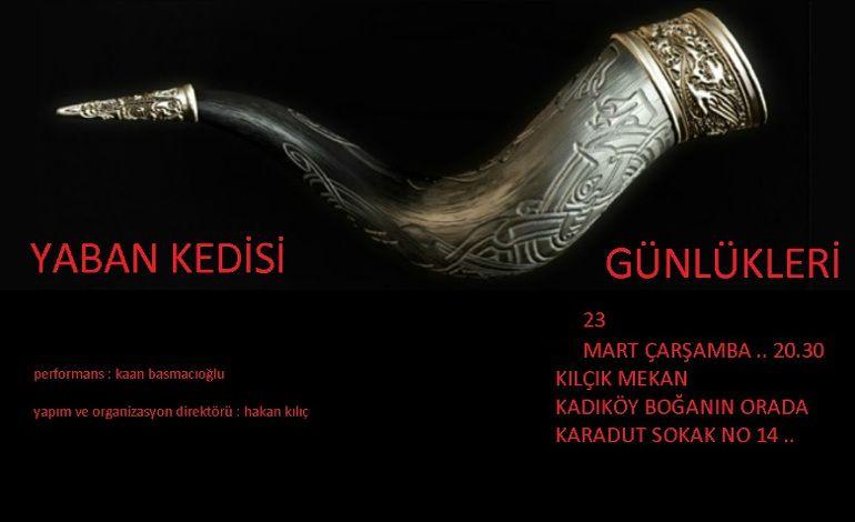 Kaan Basmacıoğlu Yaban Kedisi Günlü