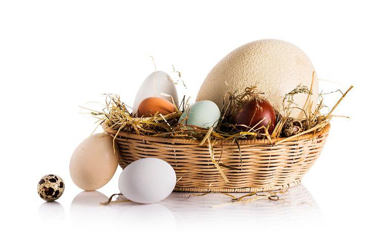 Paskalya Bayramı Eataly'de Kutlanıyor!