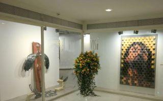 Vis Sanat Galerisi