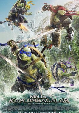 Ninja Kaplumbağalar: Gölgelerin İçinde