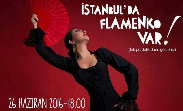 İstanbul'da Flamenko Var