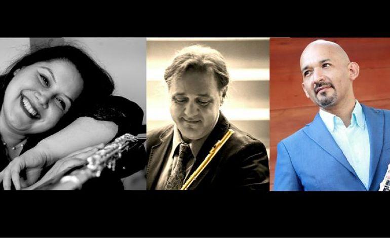 Mersin Oda Orkestrası & Solistler 2