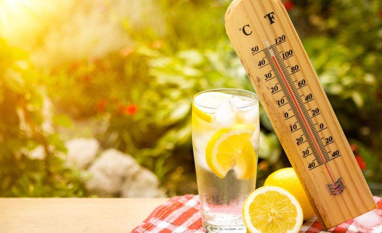 Güneş Çarpmasının Kalkanı: Bol Su İçmek