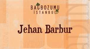 Bağbozumu İstanbul Festivali